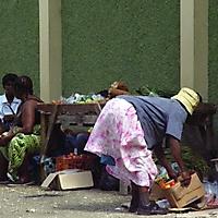 jamaica_14