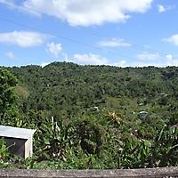 jamaica_4
